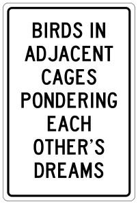 Prince Myshkin's Birds in adjacent cages